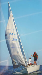 J24 SAILBOAT WITH MARINE SURVEY
