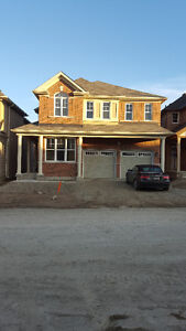 BRAND NEW house for rent in brampton available from oct20,2016
