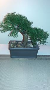 Bonsai Tree - Gift Deco - Artificial