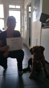 Dressage canin à domicile