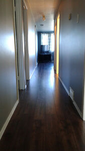 3 Bedroom Apt. Great for Students