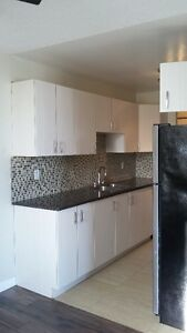 2 bed all included downtown highrise Edmonton Edmonton Area image 7