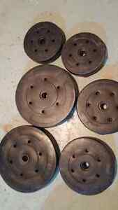 Weights plate for sale Cambridge Kitchener Area image 1