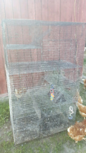 XL critter cage