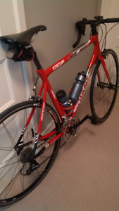 Giant TCR2 55.5 Frame, Composite post, Forks the usual.