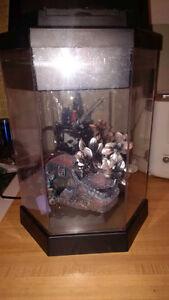 Small Fish Aquarium (Hexagon) plus accessories