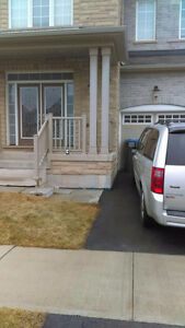 BRAND NEW 2 bedroom basement apartment available March 1st