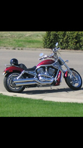 Great Vrod in great shape. Stored for last 5 years