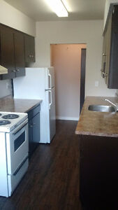 Just Renovated! 2 Bedroom Suite
