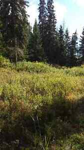 5 Acres close to Smithers