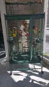 Parrot  cage $500.00