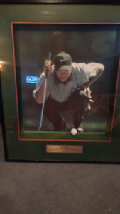 Tiger Woods Framed Picture, Perfect for the Bar