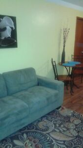 Fully Furnished 1 bdrmOn bus route to U of W and Saint Clair Col