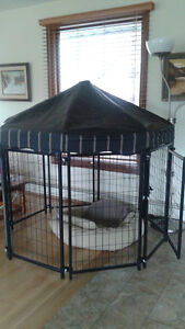 Dog pen / covered enclosure