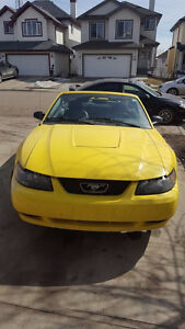 2003 Ford Mustang Coupe (2 door) - CONVERTIBLE!