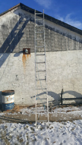 25 ft ladder