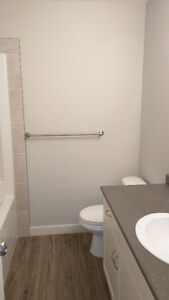 Brand New 4 plex for rent in Camrose, AB. Water included Strathcona County Edmonton Area image 3