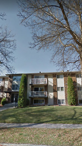 New Renovated 1bedroom Apartment Suite St Albert