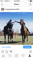 Mothers Day Trail Rides and May Trail ride specials!!!