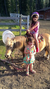 PONY RIDING LESSONS / FARM DAY THERAPY