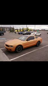 2012 Ford Mustang California Coupe (2 door)