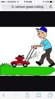 Grass Cutting / Lawn Mowing and Trimming Services