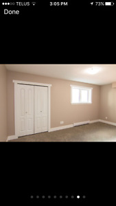 Downtown Large Bedroom for Rent