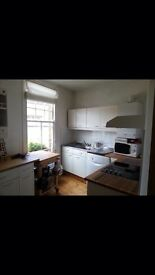 Large room in a spacious 4 bed flat in centre of twikenham