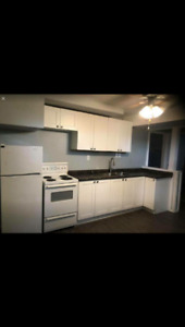 2 bedrooms newly renovated basement suite