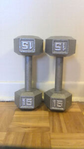 Two 15lb weights
