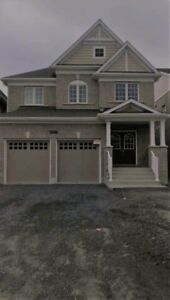 Brand new house for rent in Oshawa