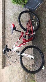 Ladies 23'frame bicycle