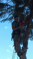 ACE TREE PRUNING SERVICES  ATPS