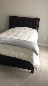 Dark chocolate brown queen sized bed frame. London Ontario image 2