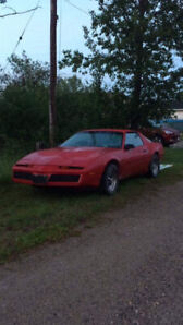 1982 Pontiac Firebird Coupe (2 door)
