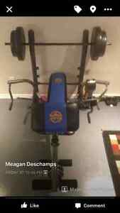 workout bench with 80lb of weights