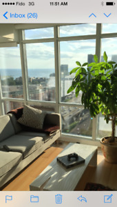 1 BDR CONDO FOR RENT AT BRUNEL CRT DOWNTOWN