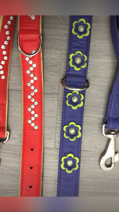Dog collars and matching leashes