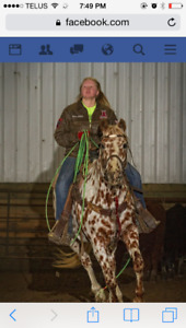Horsemanship Clinic Patti Jo Collett