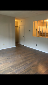 Well Kept Two Bedroom Apartment Suit