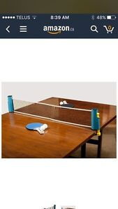 Go anywhere ping pong set
