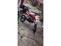 125cc pitbike!