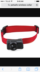 Looking for an extra pet safe wireless collar