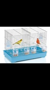 I'm looking for a double cage for my 2 males canaries