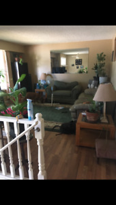 Beautiful large home for rent Nov 1 - Kelowna