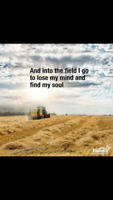 Sonoran Farms - Hay and Beef 2018 Pre Order