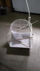 Pied et cage d'oiseau