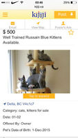Be careful there is a liar in kijiji!