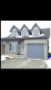 Orangeville: Walk-out Lower Level of Detached House! July1st
