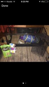 Large Rabbit cage w/ playpen, food & accessories